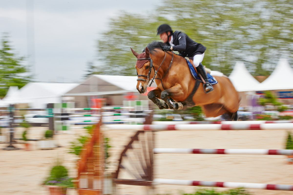 Jumping Bourg 2013
