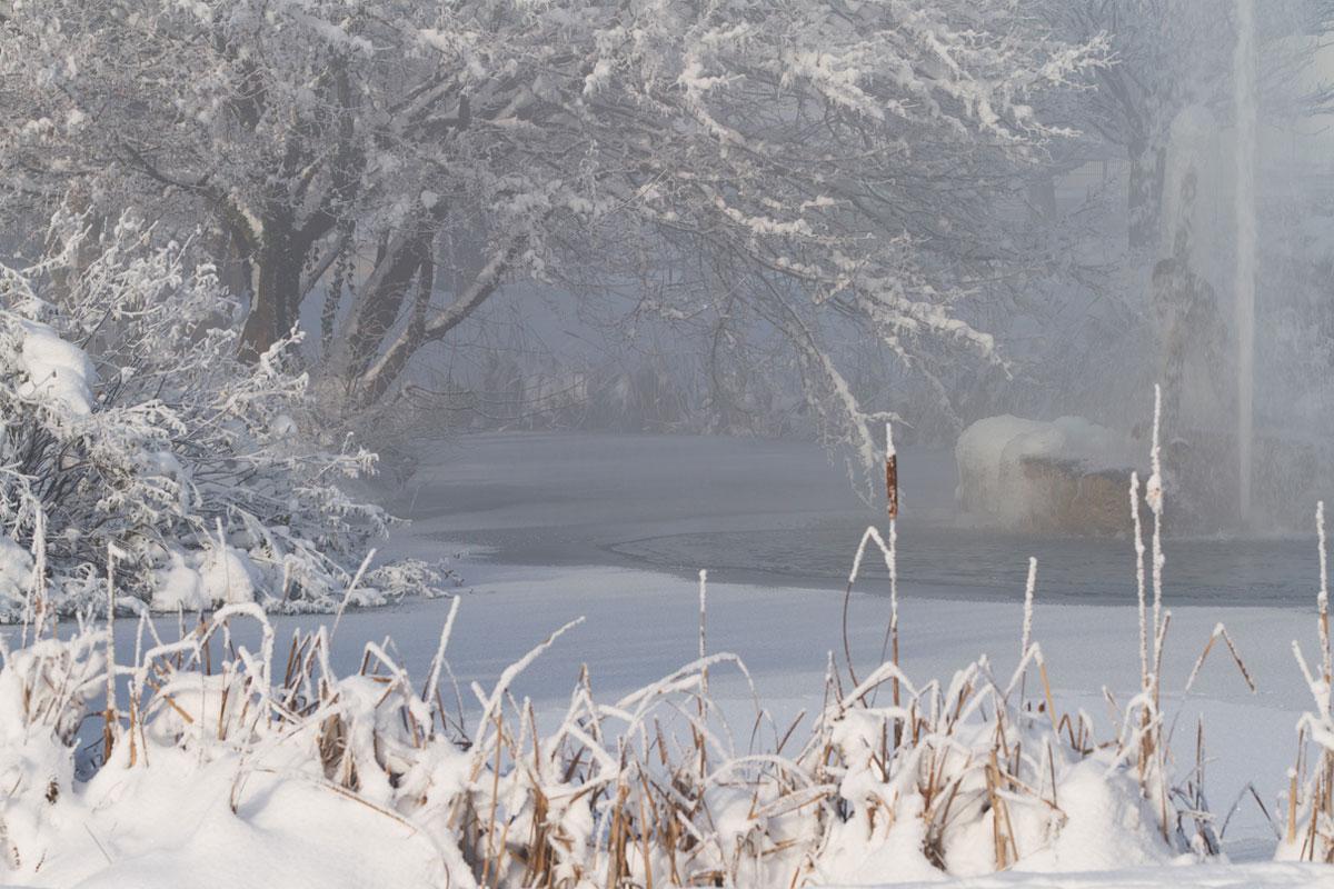 L' ancre de Jons en hiver